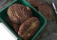 Proteincookies20193
